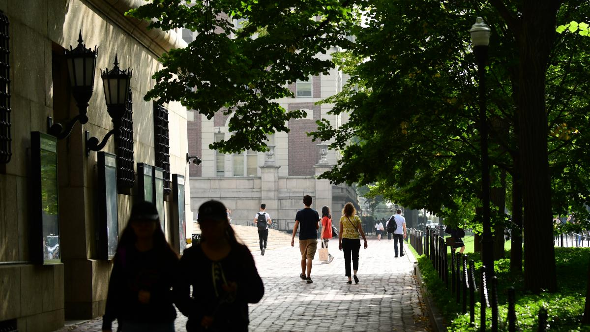 A photograph of College Walk covered in shade
