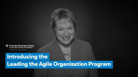Embedded thumbnail for Introducing the Leading the Agile Organization Program