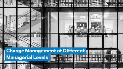 Embedded thumbnail for Change Management at Different Managerial Levels