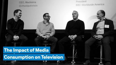 Embedded thumbnail for The Impact of Media Consumption on Television