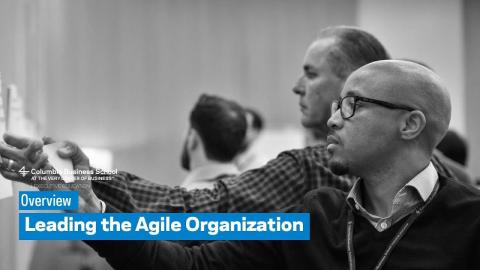 Embedded thumbnail for Leading the Agile Organization: Overview