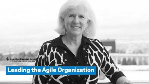 Embedded thumbnail for Leading the Agile Organization